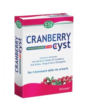 Cranberry Cyst