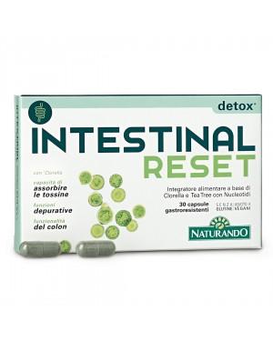 Intestinal Reset